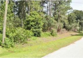 Sebring, Florida 33872, ,Land,Sold,1000