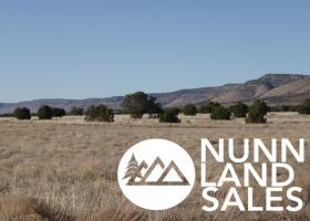 Paulden, Arizona 86334, ,Land,Sold,1094