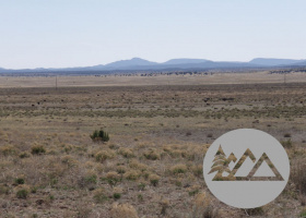 Paulden, Arizona 86334, ,Land,Sold,1096