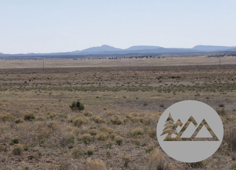 Paulden, Arizona 86334, ,Land,Sold,1096