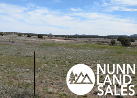 Paulden, Arizona 86334, ,Land,Sold,1099