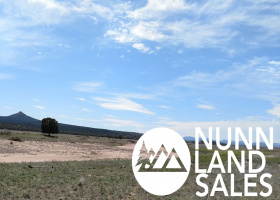 Paulden, Arizona 86334, ,Land,Sold,1102