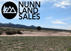 Paulden, Arizona 86334, ,Land,Sold,1103
