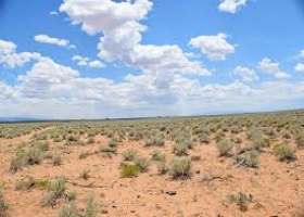 Socorro, New Mexico 87801, ,Land,Sold,1010