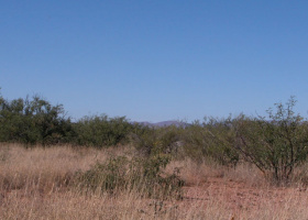 Cochise, Arizona 85607, ,Land,Sold,1106