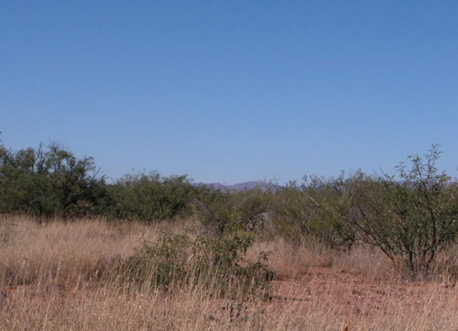 Cochise, Arizona 85607, ,Land,Sold,1106