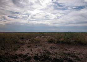 Holbrook, Arizona 86025, ,Land,For Sale,1115