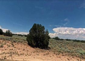 Sanders, Arizona 86502, ,Land,For Sale,1118