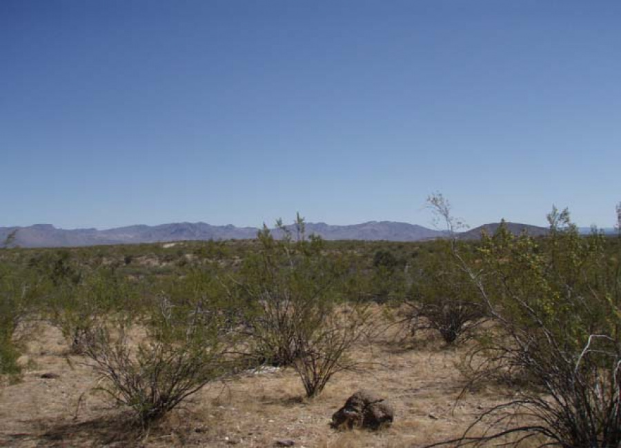 Deming, New Mexico 88030, ,Land,Sold,1192