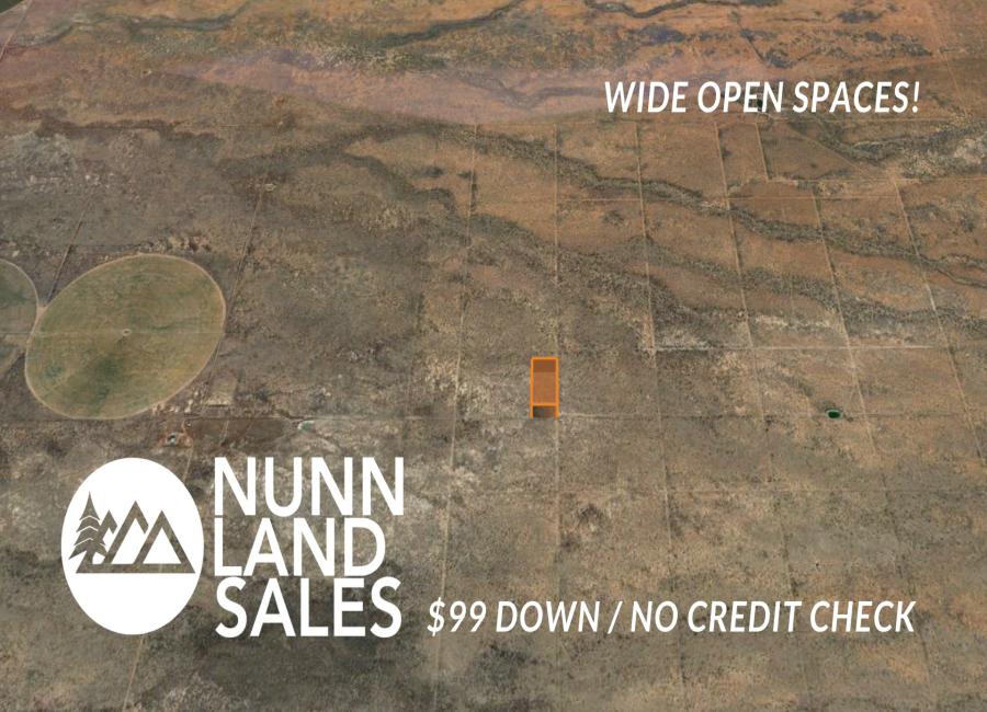 Pearce, Arizona 85625, ,Land,Sold,1198