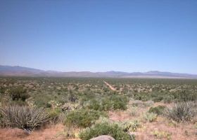 Kingman, Arizona 86401, ,Land,Sold,1020