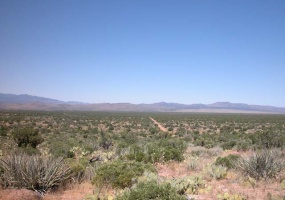Kingman, Arizona 86401, ,Land,Sold,1020