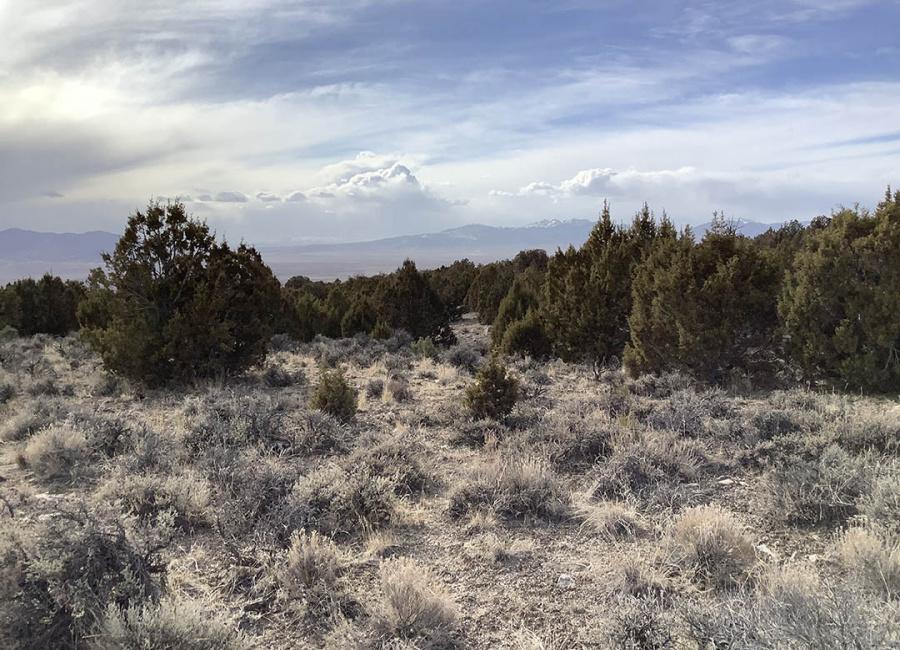 Wells, Nevada 89835, ,Land,Sold,1213