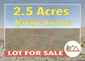 Holbrook, Arizona 86025, ,Land,Sold,1216