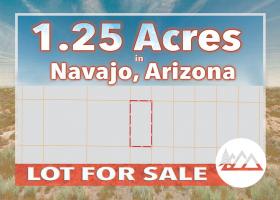 Holbrook, Arizona 86025, ,Land,Sold,1217