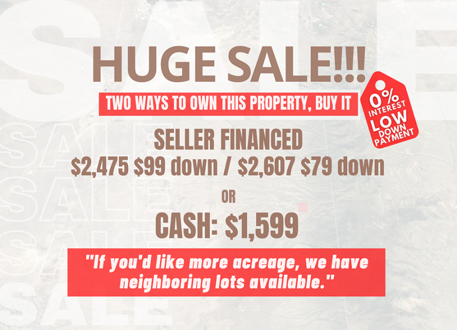 Holbrook, Arizona 86025, ,Land,For Sale,1219