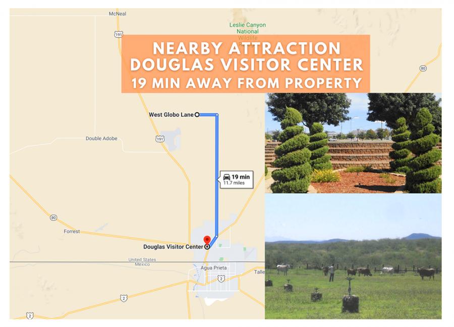 Douglas, Arizona 85607, ,Land,For Sale,1235
