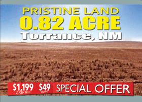 Moriarty, New Mexico 86035, ,Land,For Sale,1237
