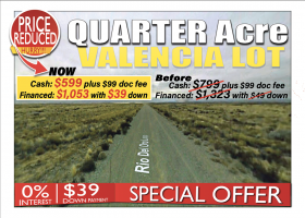 Los Lunas, New Mexico 87031, ,Land,For Sale,1238