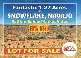 Snowflake, Arizona 85937, ,Land,For Sale,1241