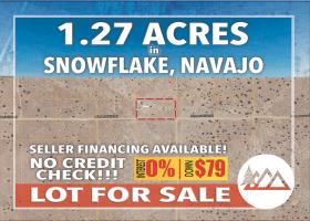 Snowflake, Arizona 85937, ,Land,For Sale,1242