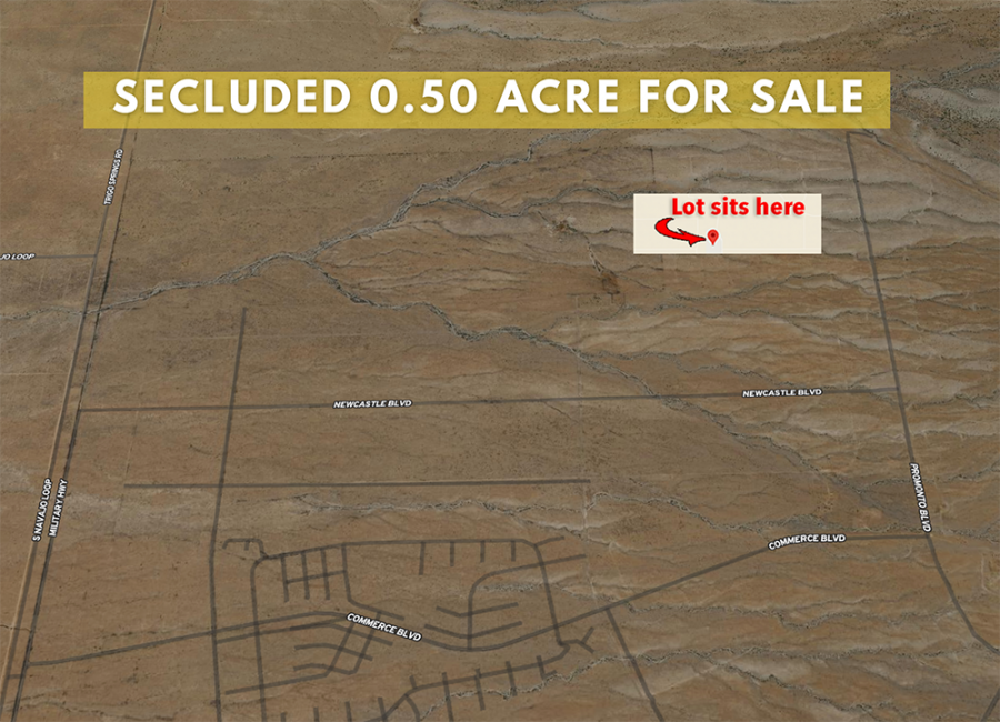 Belen, New Mexico 87002, ,Land,For Sale,1250