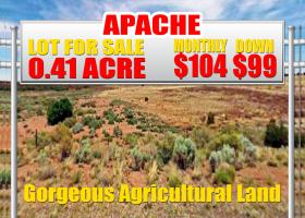 Concho, Arizona 85924, ,Land,Sold,1255