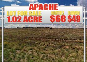 Chambers, Arizona 86502, ,Land,For Sale,1259