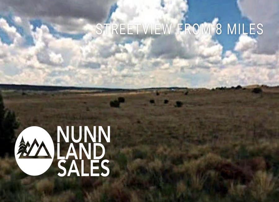 Chambers, Arizona 86502, ,Land,Sold,1259