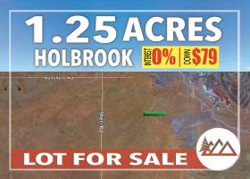 Holbrook, Arizona 86025, ,Land,Sold,1261