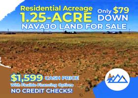 Holbrook, Arizona 86025, ,Land,Sold,1280