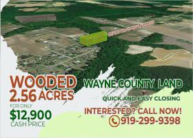 Pikeville, North Carolina 27863, ,Land,For Sale,1281