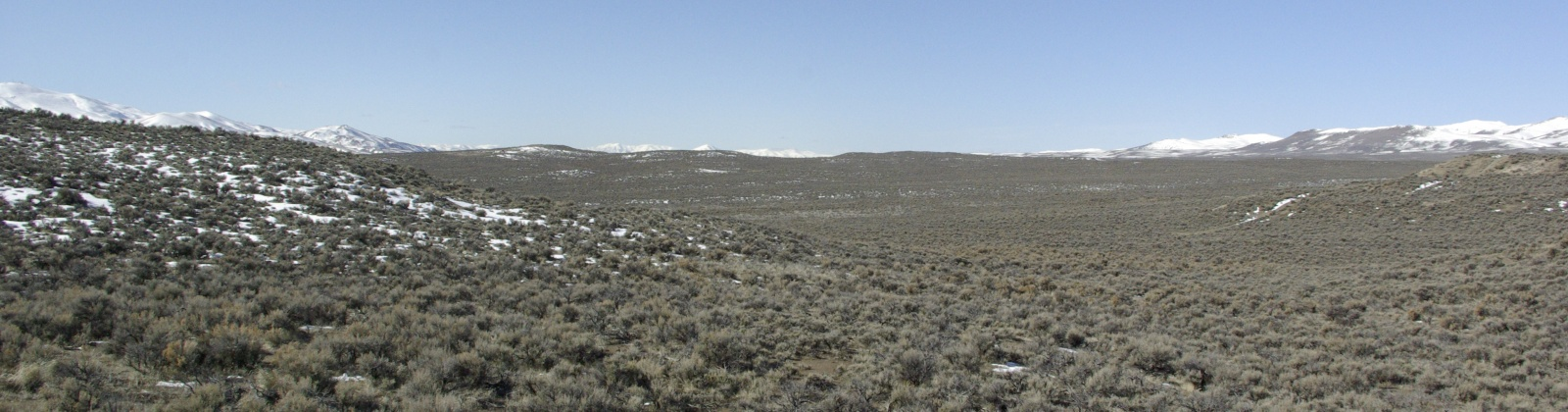 Elko, Nevada 89801, ,Land,For Sale,1028