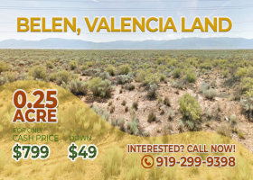 Belen, New Mexico 87002, ,Land,For Sale,1291