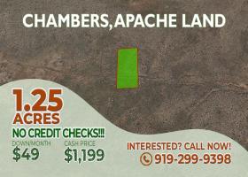 Chamber, Arizona 86512, ,Land,Sold,1292