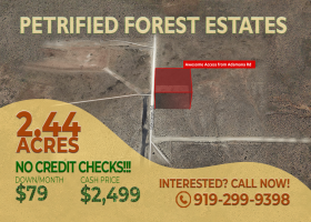 Petrified National Park, Arizona 86028, ,Land,Sold,1294