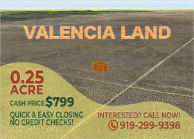 Los Luna, New Mexico 87031, ,Land,For Sale,1301