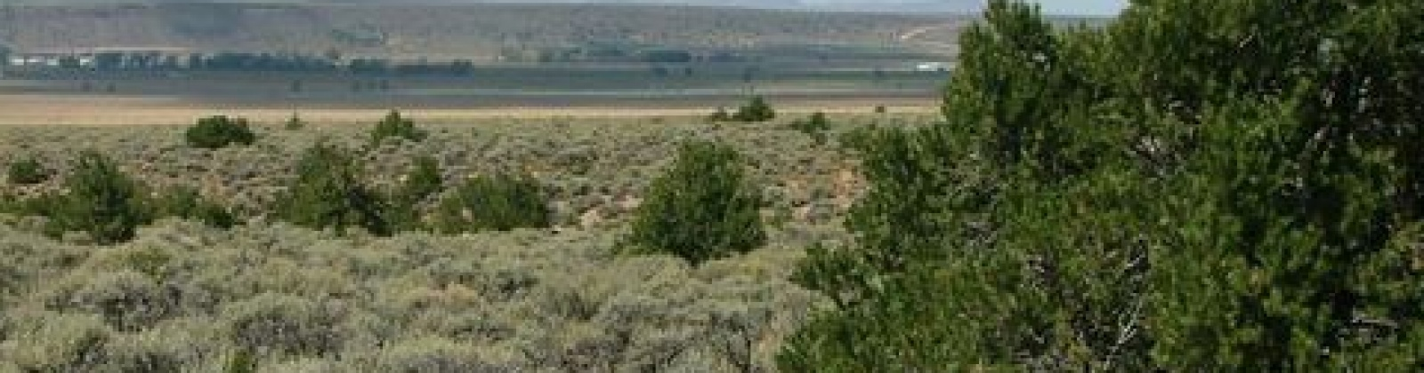 Blanca, Colorado 81123, ,Land,Sold,1031