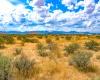 Cochise, Arizona 85606, ,Land,For Sale,1353
