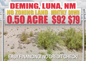 Deming, New Mexico 88030, ,Land,For Sale,1365