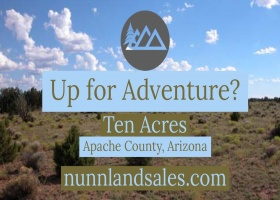 Concho, Arizona, ,Land,Sold,1037