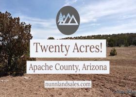 Concho, Arizona 86502, ,Land,Sold,1038