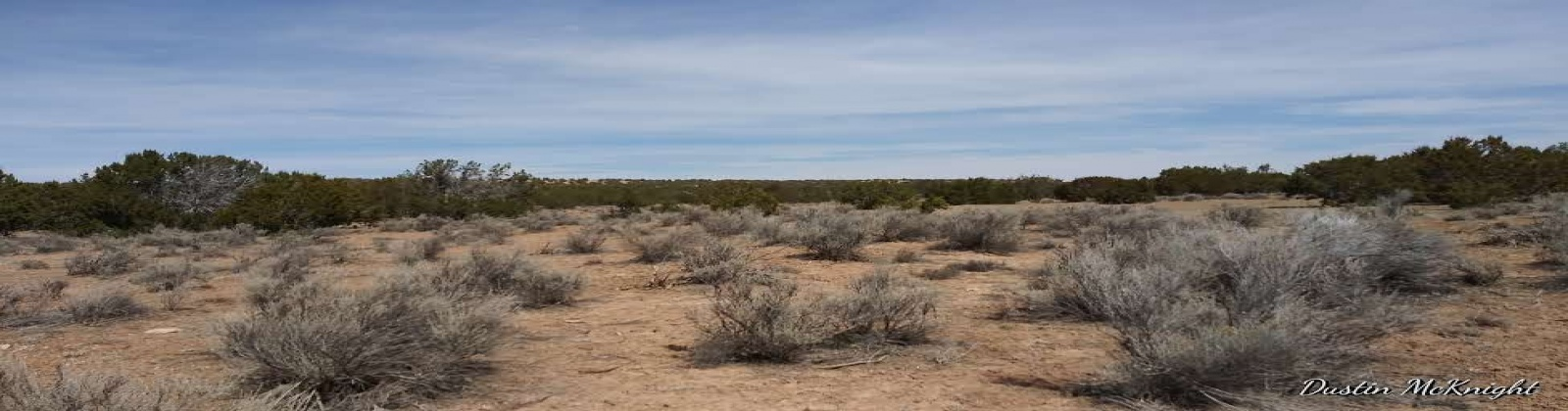 Concho, Arizona 86502, ,Land,For Sale,1038