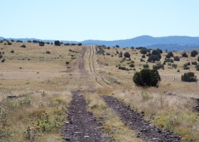 Concho, Arizona 85924, ,Land,Sold,1003