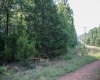 1801 Peaceful Hollow Dr, Horseshoe Bend, Arkansas 72512, ,Land,Sold,Peaceful Hollow Dr,1043