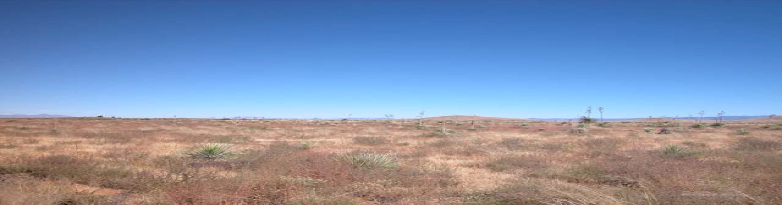Pearce, Arizona 85625, ,Land,Sold,1046