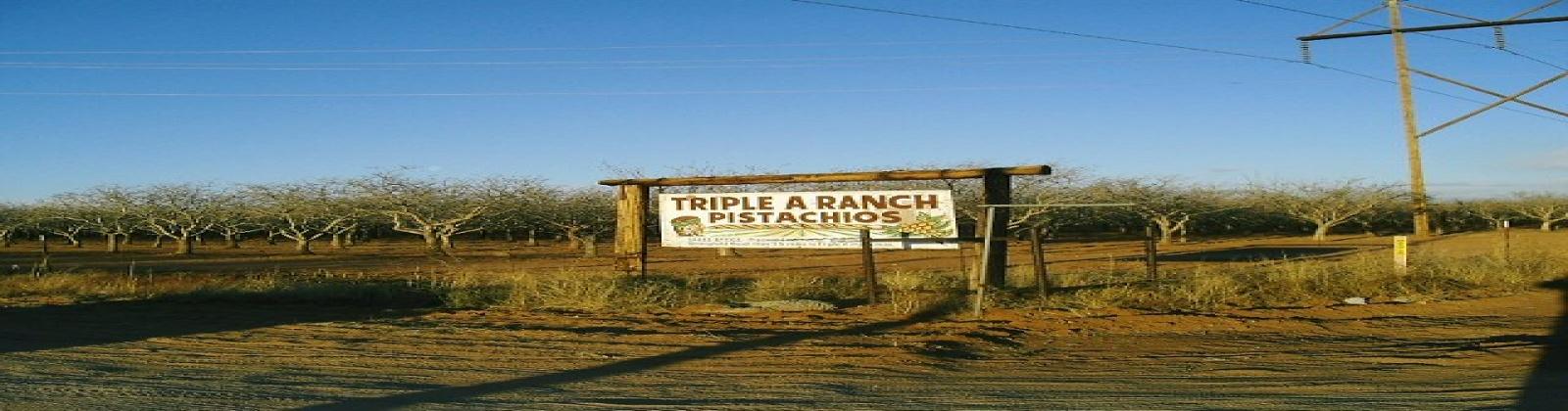 Cochise, Arizona 85606, ,Land,Sold,1052