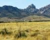 Cochise, Arizona 85606, ,Land,For Sale,1059