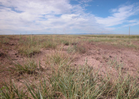 Holbrook, Arizona 85606, ,Land,Sold,1063