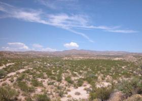 Topock, Arizona 86436, ,Land,Sold,1072
